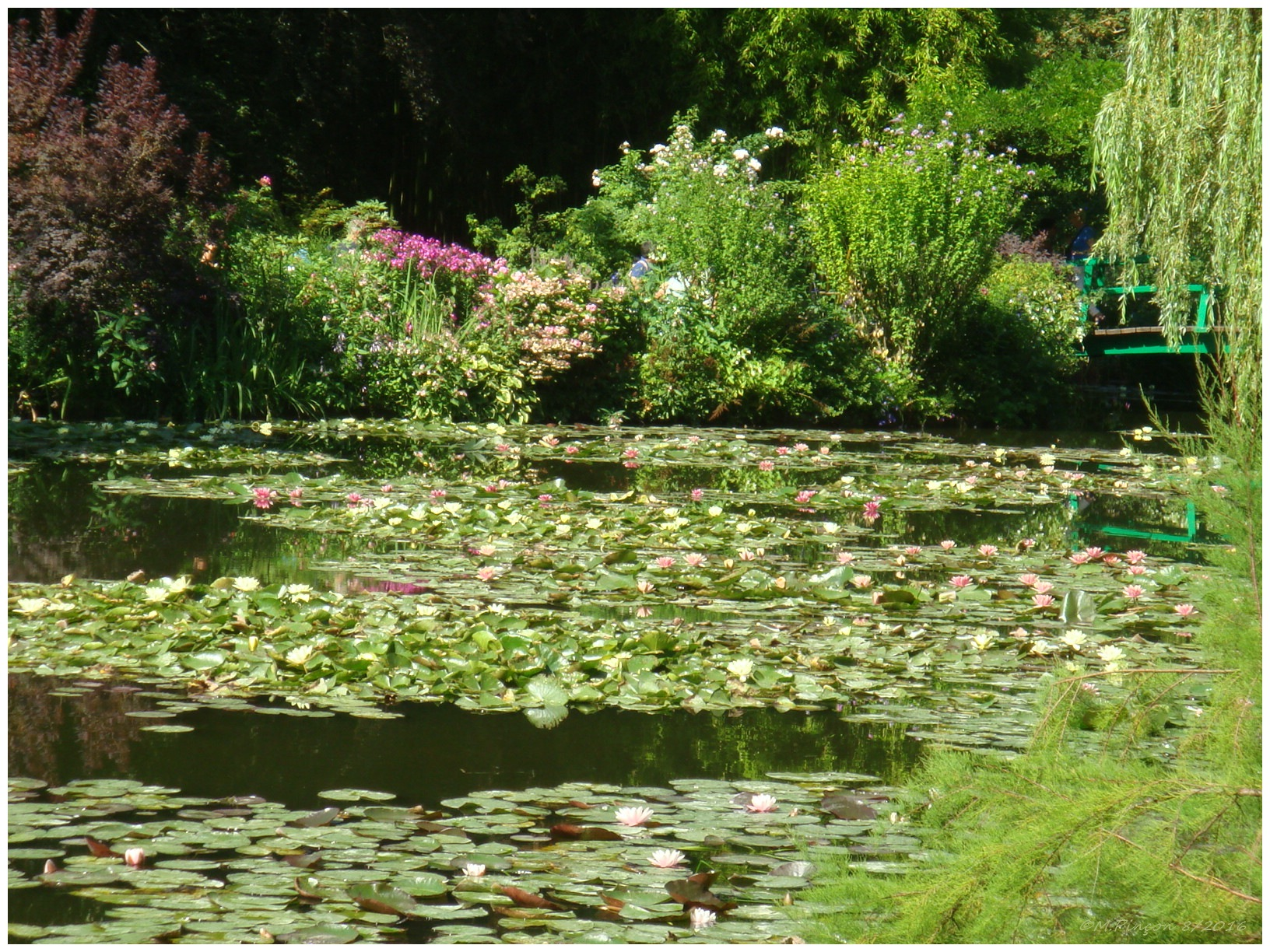 """GIVERNY"" chez Claude MONET 190703DSC010908"