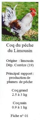 Les doubles de Savoyman - Page 20 19210801Limousin