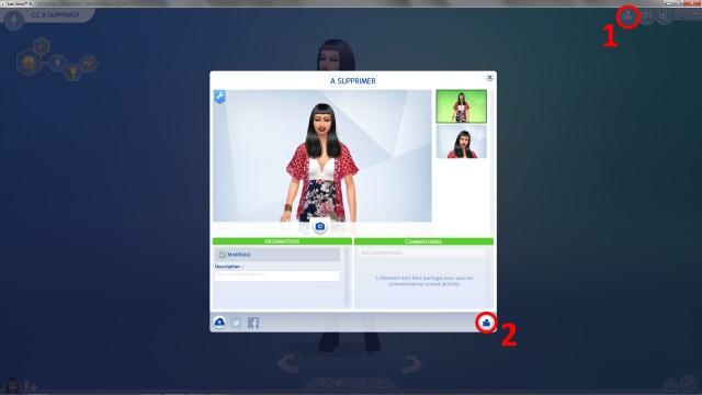 [Débutant] Supprimer facilement du jeu le contenu personnalisé dont on ne veut pas grâce à Sims 4 Tray Importer 196512Post4image1