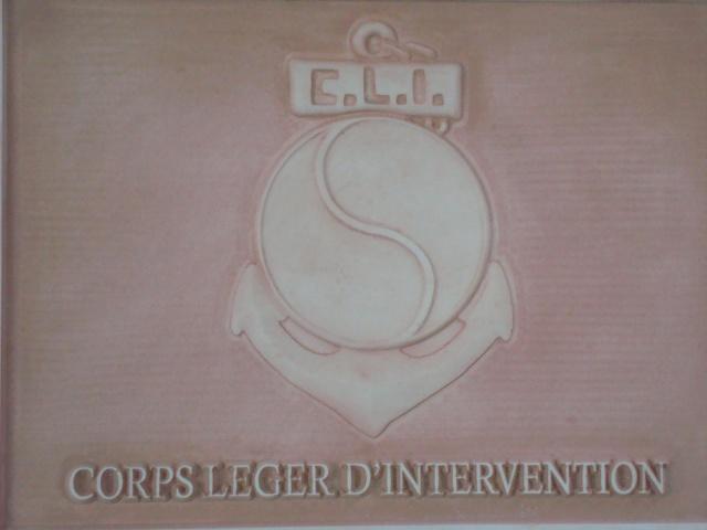 PORTES OUVERTES DU 1er Régiment de Choc (CNEC) 197996019
