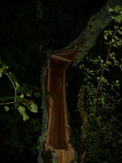 Orages monstres sur le Bordelais dans la nuit du 25 au 26/07 et du 26 au 27/07 199369P1200609