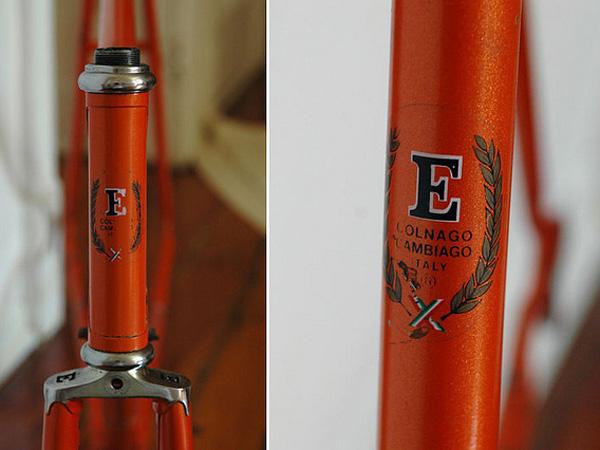 Ernesto Special (presque orange) 205483ernestoautres002