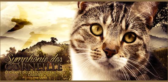 """Décadence Hérétique   """" Tiens, prend un peu de belladone ♥ """" 207644535685SymphoniedesCorneilles"""
