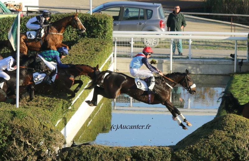Photos Auteuil 6-11-2016 2180465J6A0626
