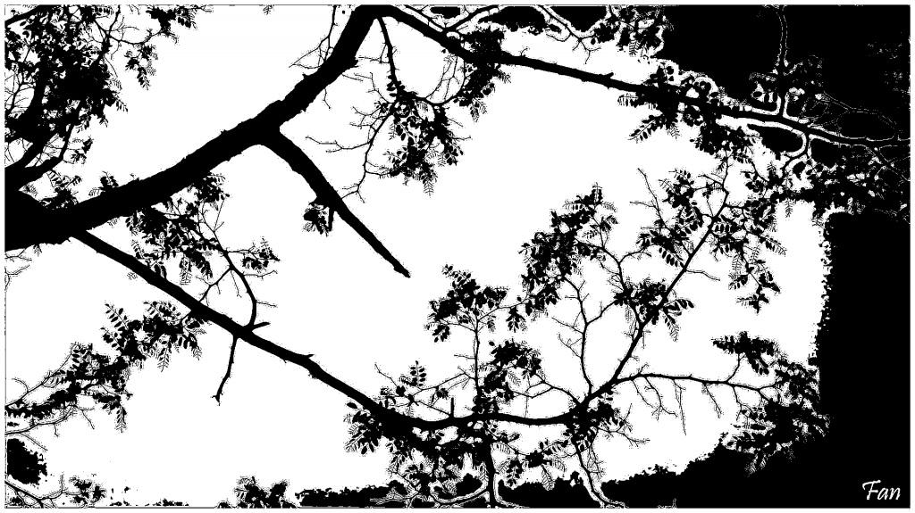 Fabrique d' IMAGES de Vagabonde (album:2) - Page 2 218722P1080267essais04stencil