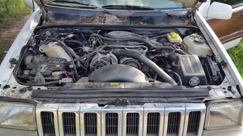 nouveau jeep 22034920160110141802