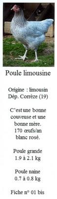 Les doubles de Savoyman - Page 20 22526401bisLimousin