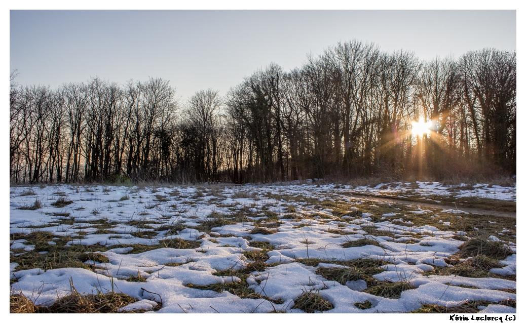Coucher de soleil et plaques de neige - Plateau de Malzéville (54) 22710389s1