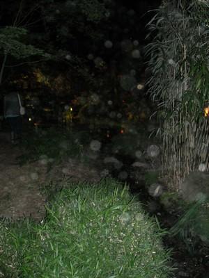 Orbs à un parc japonais 241578DSCN0984
