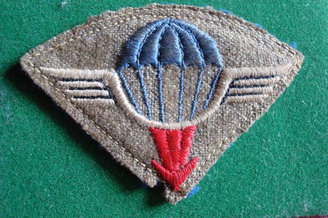 25e DAP (Division Aéroportée - 1946 à 1948) 25056725meDAP1