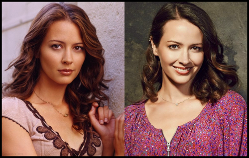 News - Page 3 263629AmyAcker