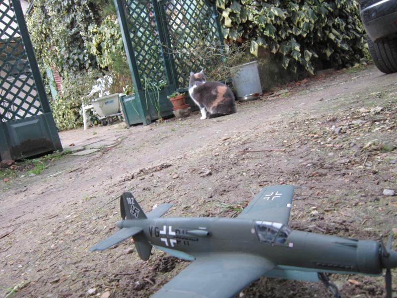 Dornier 335 A PFEIL de Tamiya au 1/48 par Pascal 94 263700IMG4151
