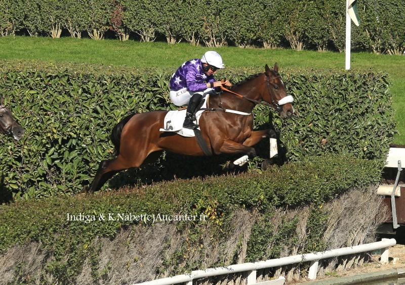 Photos Enghien 22-10-2016 Grand Steeple 2637545J6A9173