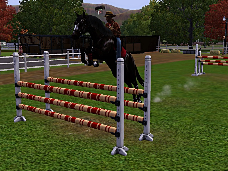 "[Challenge] Teens and Horses ""Sims 3"" - Page 3 267447entrainementausaut3"