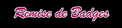 [Concours Permanent] A la chasse aux Badges ! 275536remisebadge