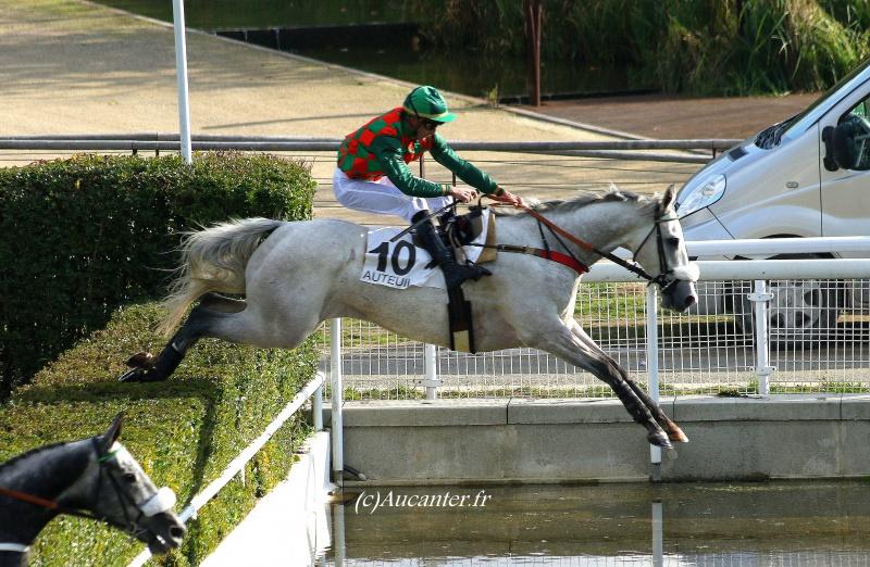 Photos Auteuil 6-11-2016 2757765J6A0020
