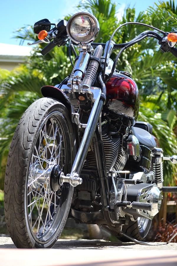 DYNA WIDE GLIDE, combien sommes-nous sur Passion-Harley - Page 7 277764DSC0211Copier