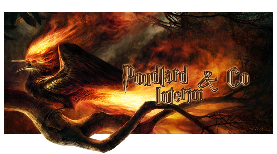 Poudlard & Co Interim