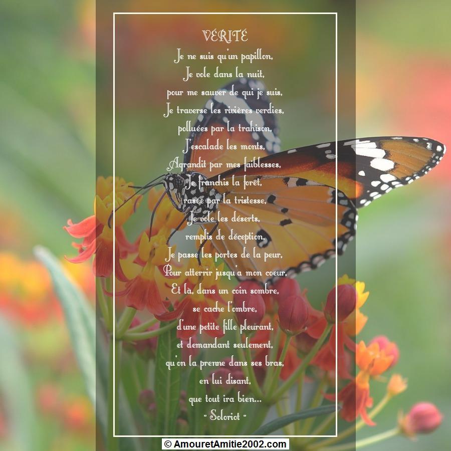 poeme du jour de colette - Page 4 279723poeme377verite