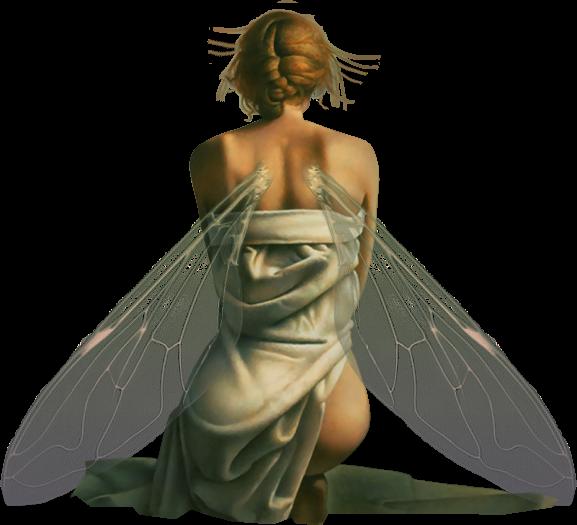 Les fées en général - Page 6 280494fairytiram57