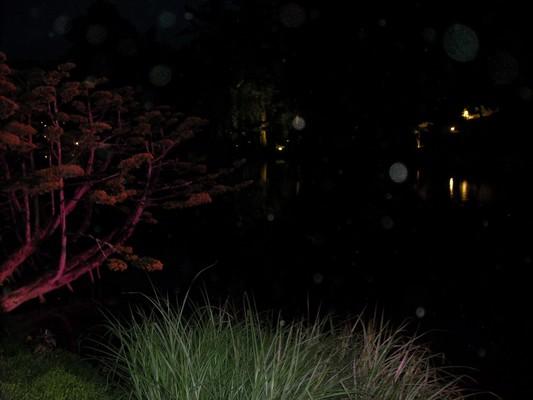 Orbs à un parc japonais 288047DSCN0992