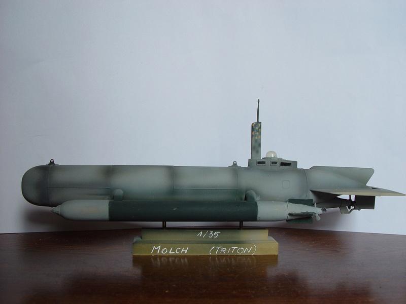 Les sous marin de poche Allemand 290891dsc00012