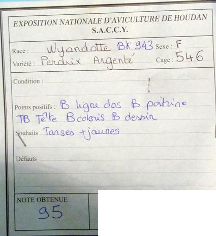 exposition d'aviculture Foire ST MATTHIEU 27 et 28 Septembre 2014 - Page 3 291214P1150740