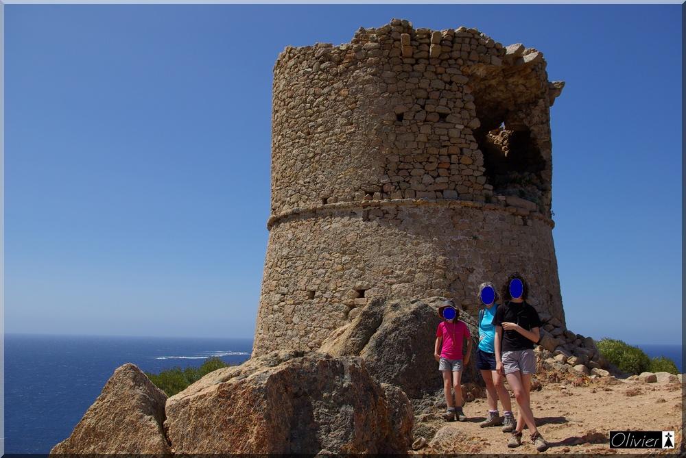 Les Tours Génoises du littoral Corse - Page 2 293191IMGP1734