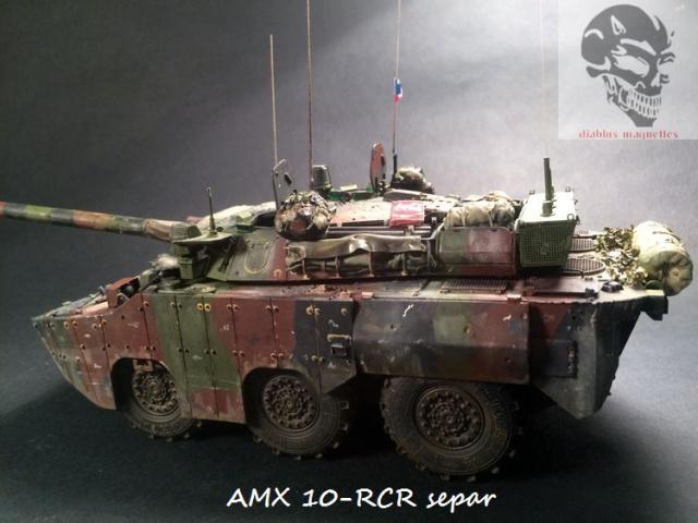 AMX 10 RCR SEPAR maquette Tiger Model 1/35 - Page 3 294358IMG3846