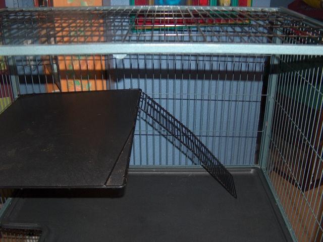 Vends cage nation 2 pour furets (à voir pour rats) 295438HPIM2683