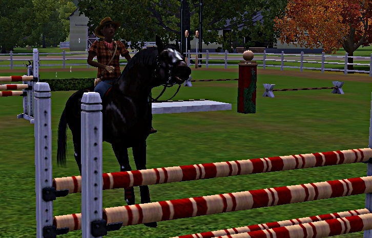 "[Challenge] Teens and Horses ""Sims 3"" - Page 3 305447entrainementausaut5"