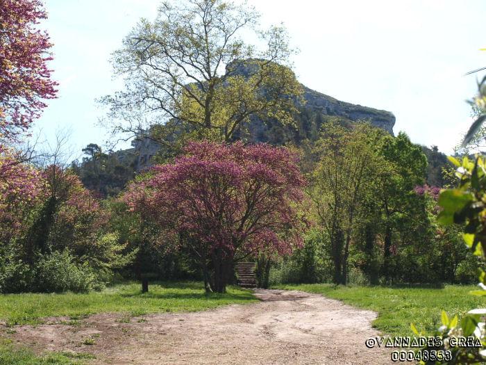 """La Vallée de St Pons """" La Vallée Rose """" à Gemenos Bouches du Rhône ♥♥♥ 31414046"""