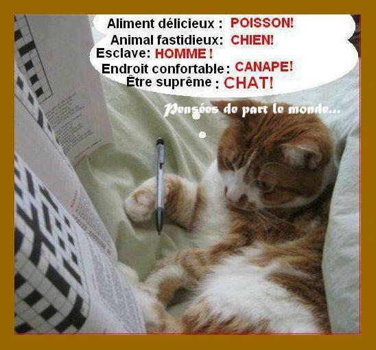 Bon Dimanche 317520aliments5012c1a