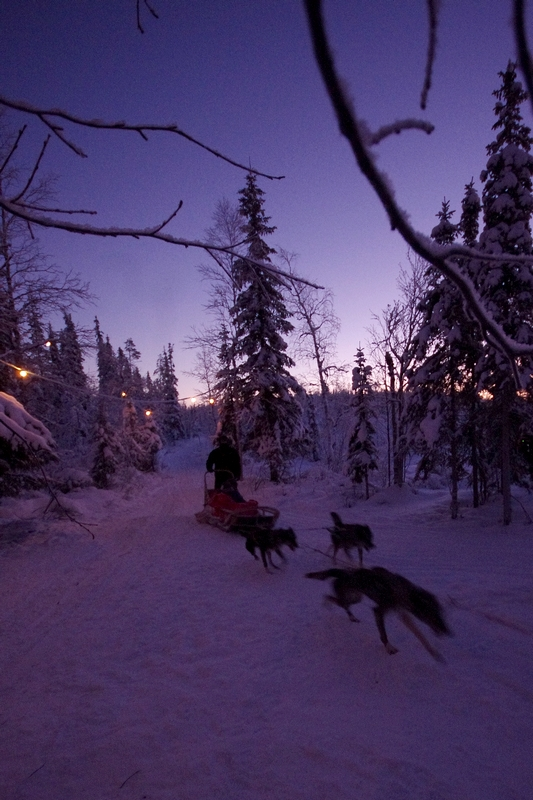 Laponie finlandaise: à la recherche du père Noël 317782laponiefinlande167b