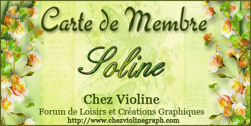 Carte de membre - Page 5 323981Soline