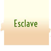 Esclave H Validé