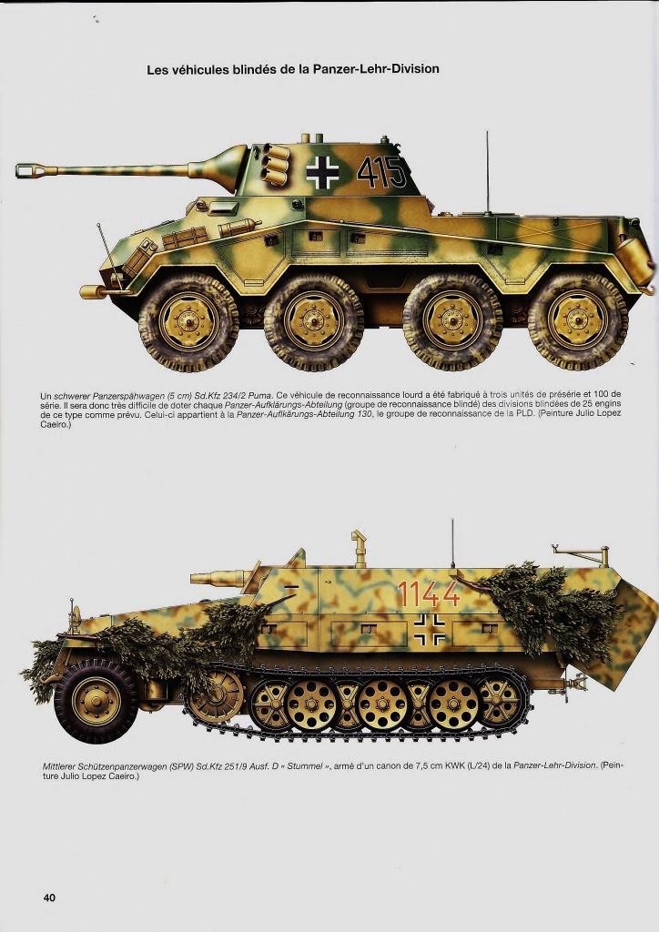 sdkfz - SdkFz 251 / 9  Tamiya / AFV 326445IMG0001Copier