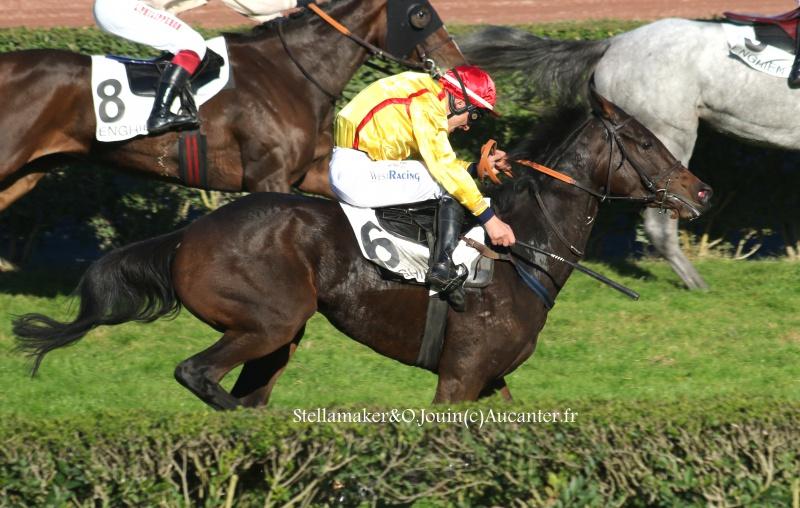 Photos Enghien 22-10-2016 Grand Steeple 3270675J6A9400