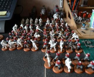Le 251e Régiment de Garde Impériale 331338007
