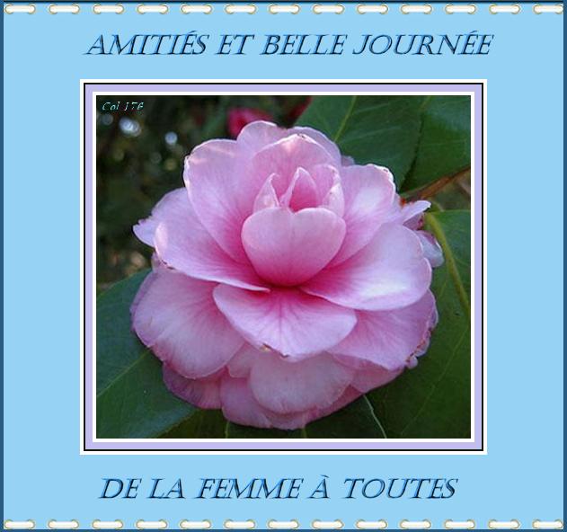 bon samedie est bon w end 8/3/2014 idem 333572Camliajournedelafemme2
