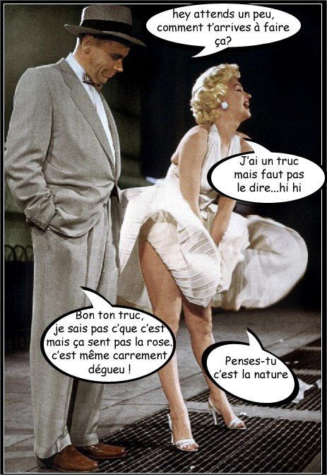 HUMOUR - blagues - Page 4 338400marilyncopie