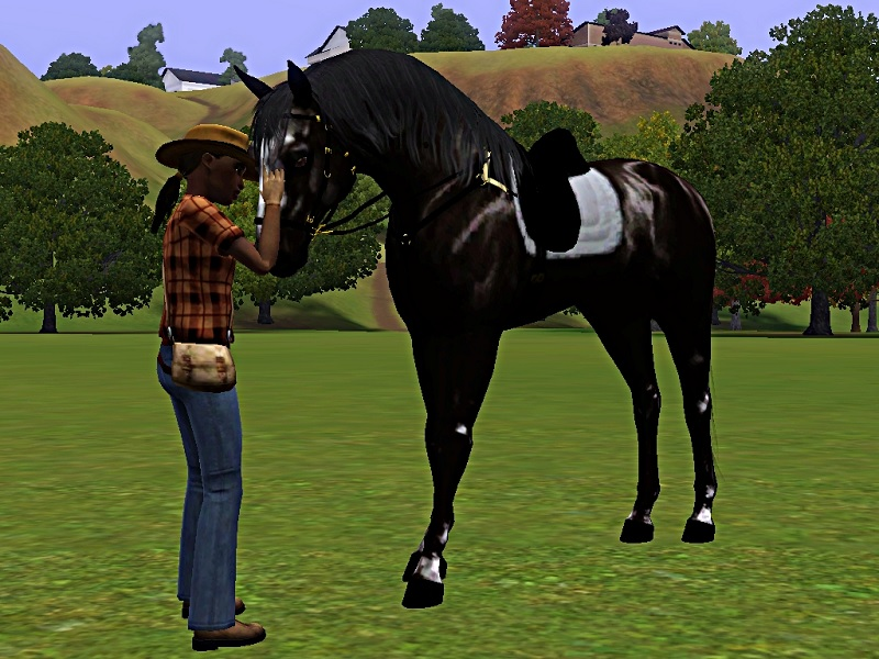 "[Challenge] Teens and Horses ""Sims 3"" - Page 3 339909Sanstitre"