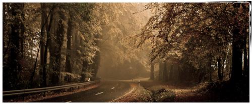 Le Chemin du Tonnerre