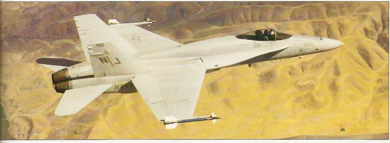 BOEING F/A-18E et F SUPER HORNET  348251McDonnellDouglasF18prsrie