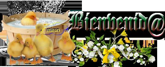 cartel bienvenid@ - Página 4 3485003Bienvenid