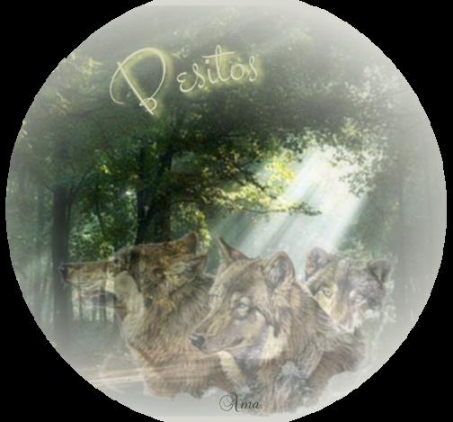 Lobos de Arga, pueblo gallego con una maldicion sus moradores se convierten en lobos cada cien años 350131besitos