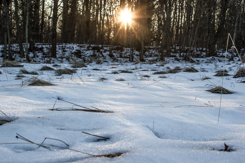 Coucher de soleil et plaques de neige - Plateau de Malzéville (54) 353346p22