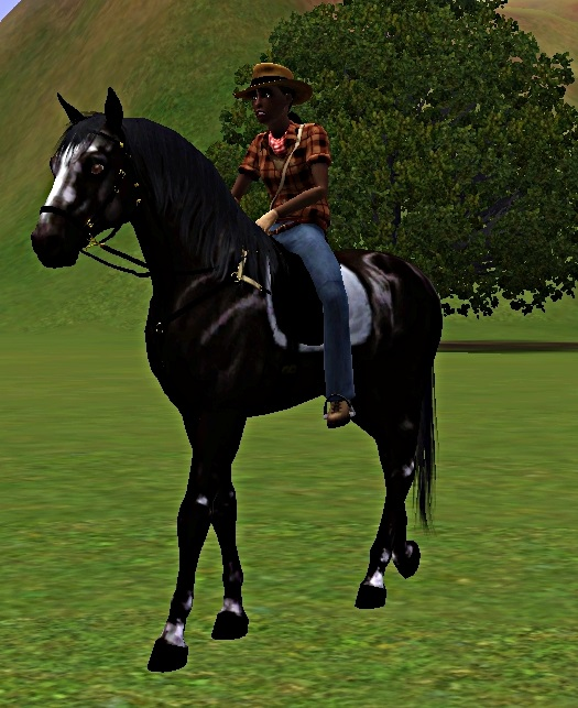 "[Challenge] Teens and Horses ""Sims 3"" - Page 3 360248premirebaladeimpressionnantmaiscool"