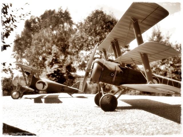 Nieuport 24 Roden 1/32 Modèle terminé. 360515Spia2588