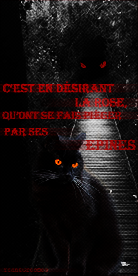 - As darkness grows, light fades - ft Mystère des Océans 362036AvatarNoirDesir